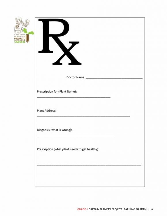 32 Real Fake Prescription Templates Printable Rx Label Template