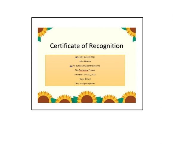 Certificate of Recognition 16