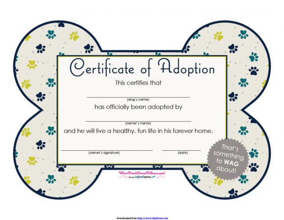 image regarding Pet Adoption Forms Printable named 40+ Accurate Phony Adoption Certification Templates - Printable