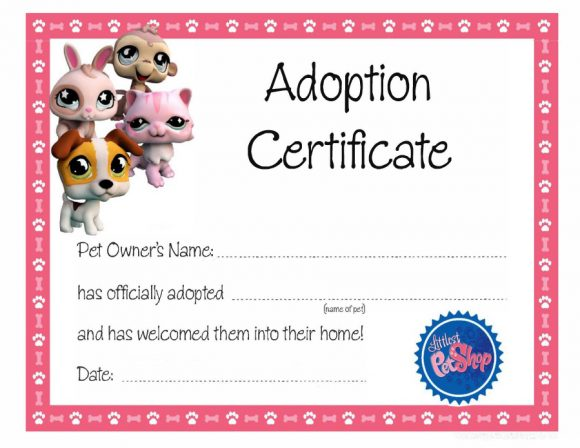 adoption certificate 06