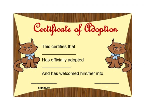 adoption certificate 17