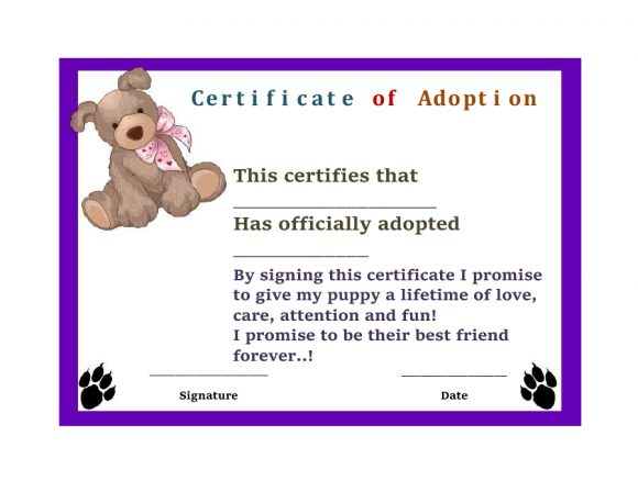 adoption certificate 21