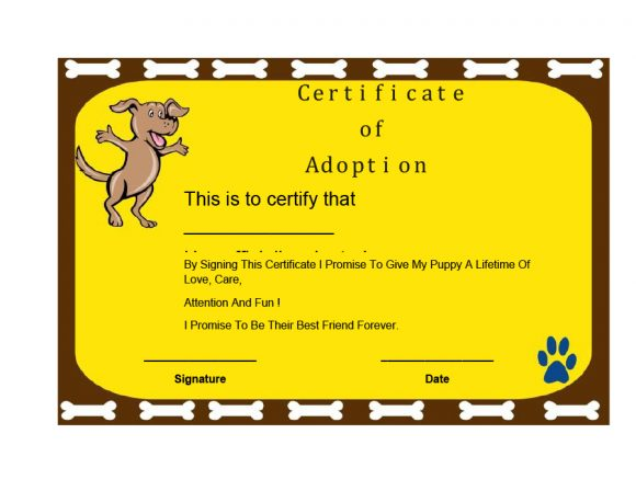 adoption certificate 22