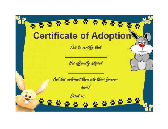adoption certificate 27
