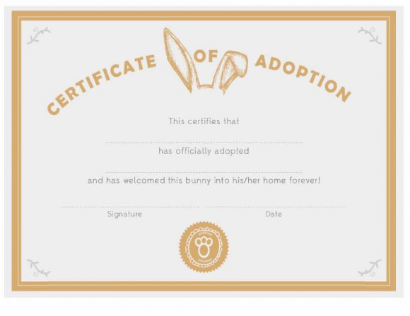 adoption certificate 30