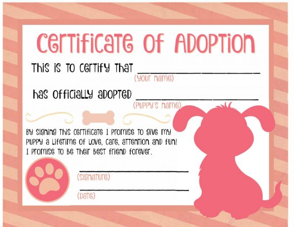 adoption certificate 35