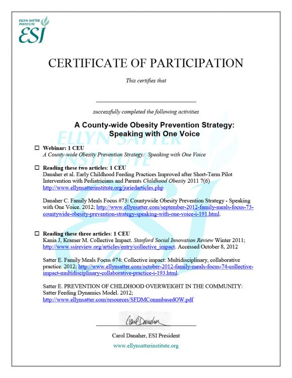 certificate of participation 08