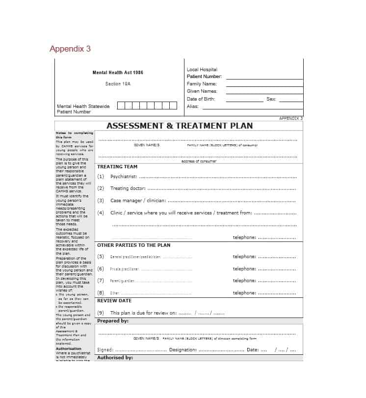 Treatment Plan Template 03